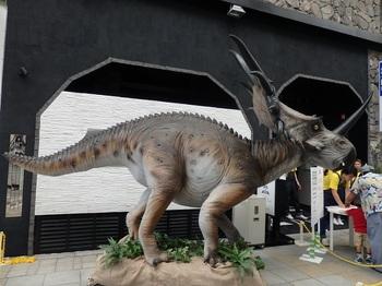 032スティラコサウルス.JPG