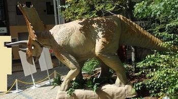 039カスモサウルス.JPG