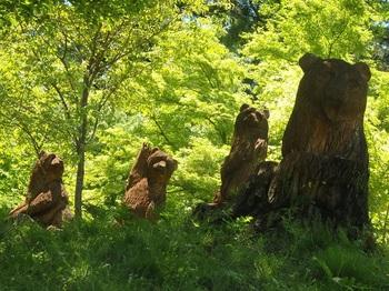 イビデンの森切り株動物園P5040439.JPG